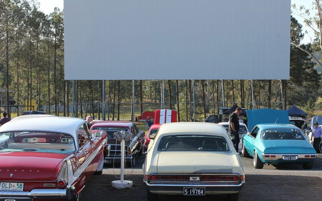 New drive-in theatre set for North Ipswich and owners of unregistered dogs put on notice